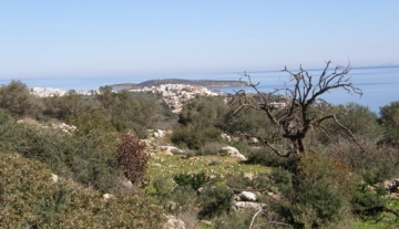 ANPL038-4,846m2 plot of land in Rousa Limni, Agios Nikolaos